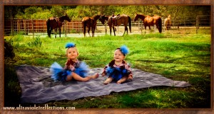 ultraviolet, reflections, charity, tomtra, tnt, babies, tutus, in a pumpkins dream, horses, ranch, photograph, photography